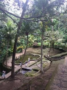 Goa Gajah- Elephant Cave